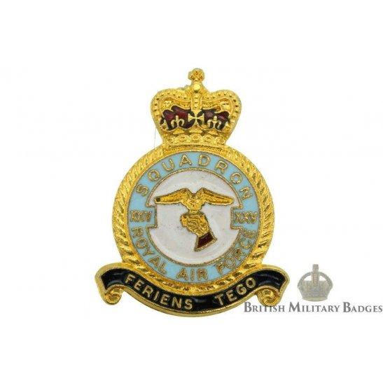 25 (XXV) Squadron Royal Air Force Lapel Badge RAF
