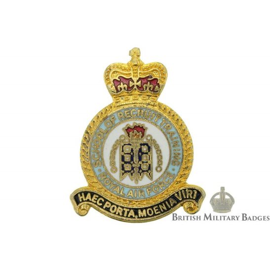 School of Recruit Training Royal Air Force Lapel Badge RAF