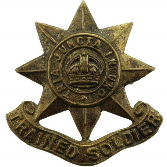 WW1 / WW2 Guards Regiment Division Trained Soldier Arm / Sleeve Cap Badge
