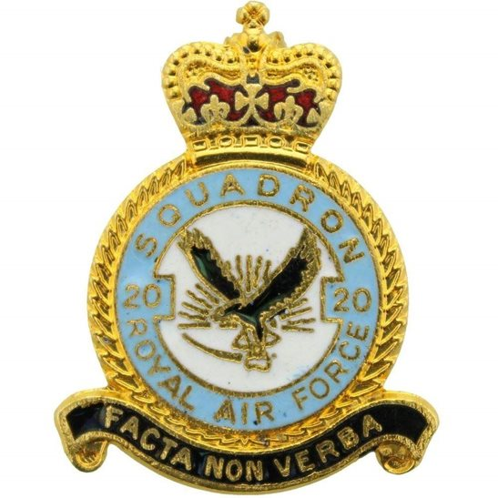 RAF Squadrons 20 Squadron Royal Air Force RAF Lapel Badge