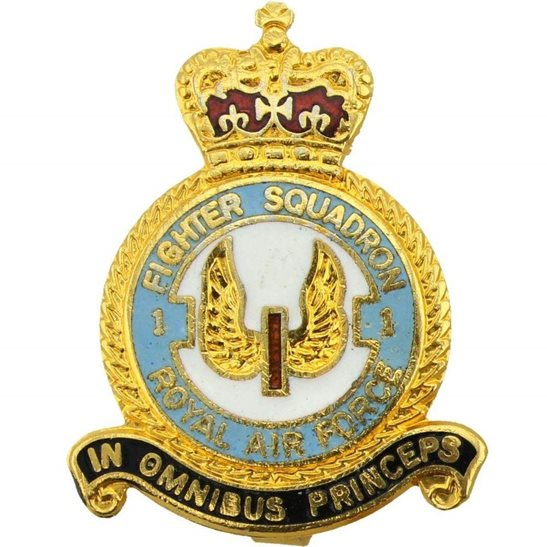RAF Squadrons 1 Fighter Squadron Royal Air Force Lapel Badge RAF