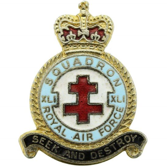 RAF Squadrons 41 (XLI) Squadron Royal Air Force RAF Lapel Badge