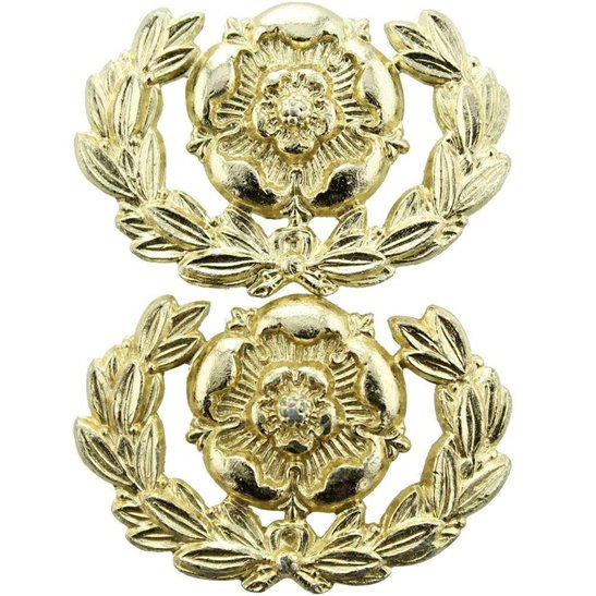 Hampshire Regiment Hampshire Regiment Staybrite Anodised Collar Badge PAIR - Staybright