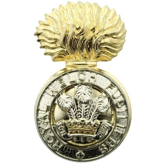 Royal Welsh Fusiliers Royal Welch Fusiliers Welsh Regiment Staybrite Anodised Cap Badge - Staybright