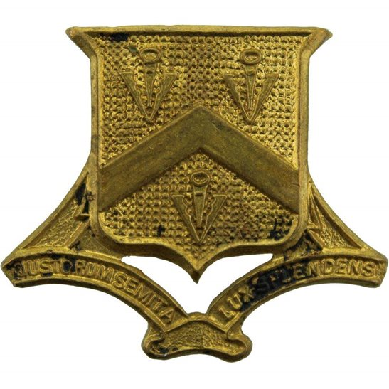 Officer Training Corps OTC Bloxham School Officers Training Corps College OTC Cap Badge