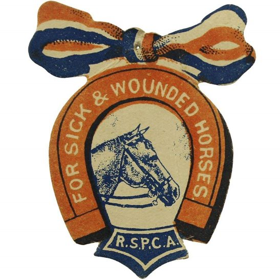 WW1 RSPCA Fund for Sick & Wounded War Horses Flag Day Pin Badge
