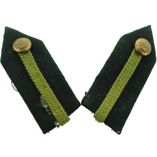 Notts and Derby Notts and Derby Regiment Officers Insignia Gorgets - Rank of Brigadier / Staff Colonel PAIR