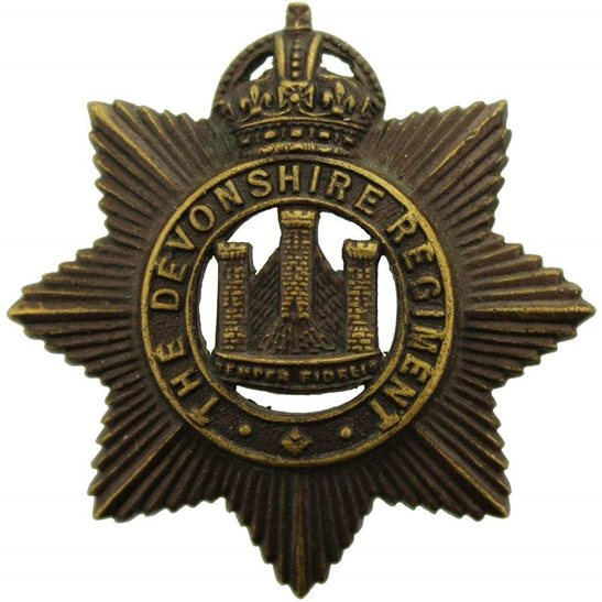 Devonshire Regiment Devonshire Regiment Devon OFFICERS Bronze Collar Badge