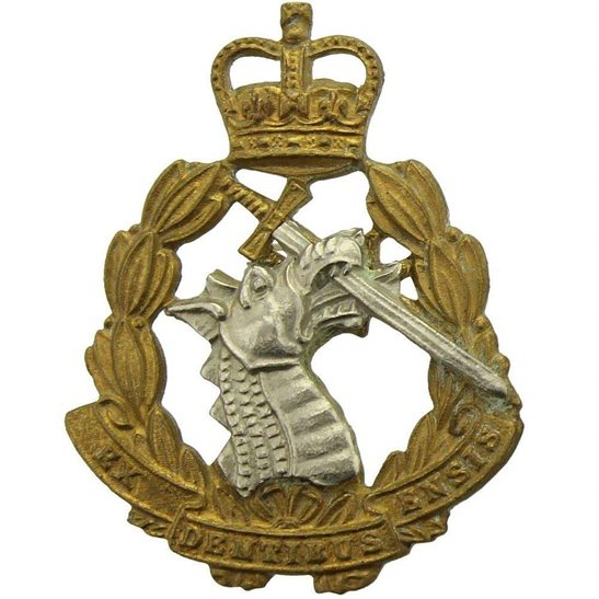 Army Dental Corps Royal Army Dental Corps RADC Dentist Collar Badge - Queens Crown