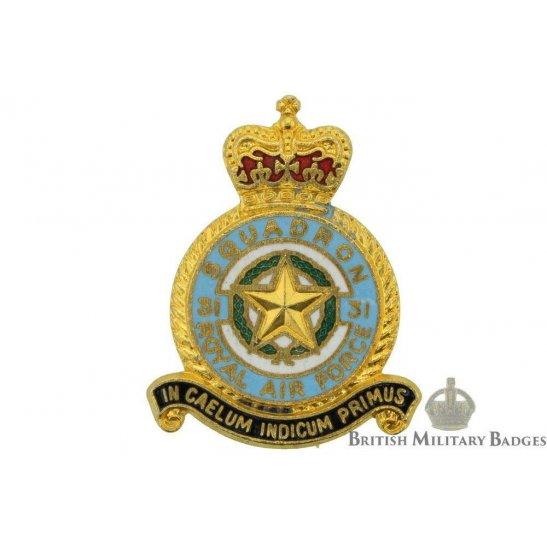 31 Squadron Royal Air Force Lapel Badge RAF
