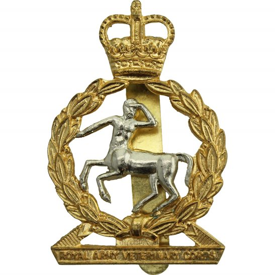 Army Veterinary Corps AVC Royal Army Veterinary Corps RAVC Cap Badge - Queens Crown