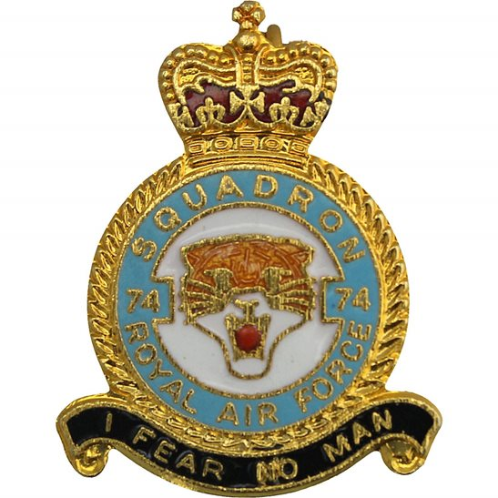 RAF Squadrons 10 Squadron Royal Air Force RAF Lapel Badge