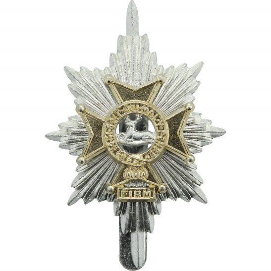 Worcestershire & Sherwood Foresters Regiment Staybrite Anodised Cap Badge - Staybright