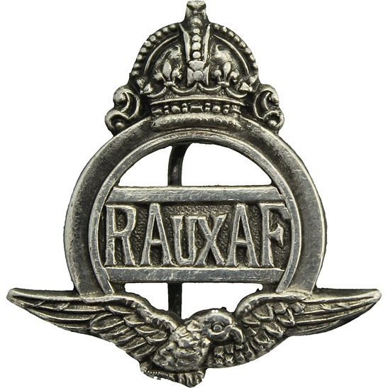 Royal Air Force RAF WW2 Royal Auxiliary Air Force AAF RAF Silver Lapel Badge