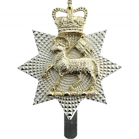 Queens Royal Surrey Regiment Staybrite Queen's Anodised Cap Badge - Staybright