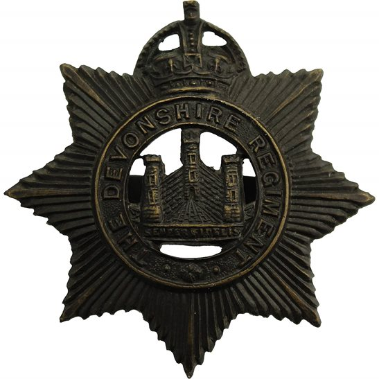 Devonshire Regiment Devonshire Regiment OFFICERS Bronze Cap Badge