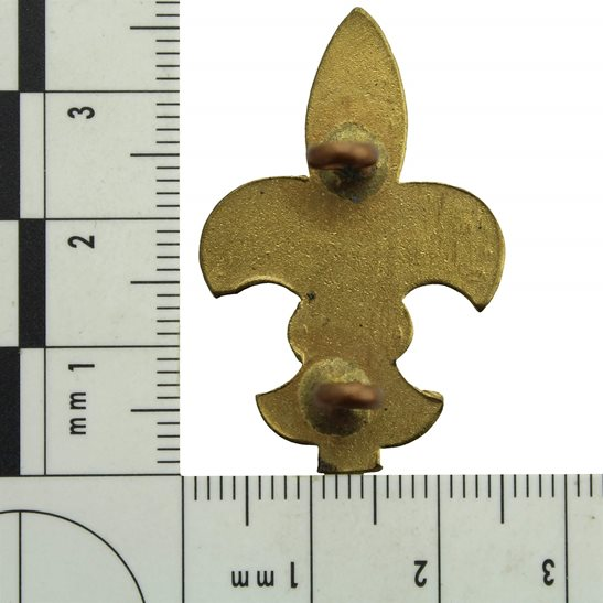 additional image for WW1 British Army Cavalry Trained Squadron Scout Proficiency Arm / Sleeve Scouts Trade Badge