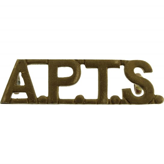 Royal Army Phyical Training Corps RAPTC Royal Army Physical Training Staff Corps APTS Shoulder Title