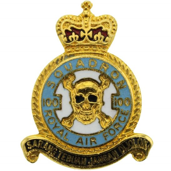 RAF Squadrons 100 Squadron Deaths Head Royal Air Force RAF Lapel Badge