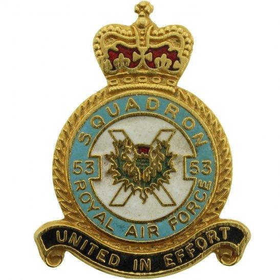 53 Squadron Royal Air Force Lapel Badge RAF