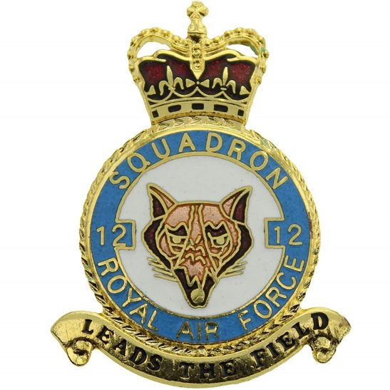 RAF Squadrons 12 Squadron Royal Air Force PLAQUE Badge RAF