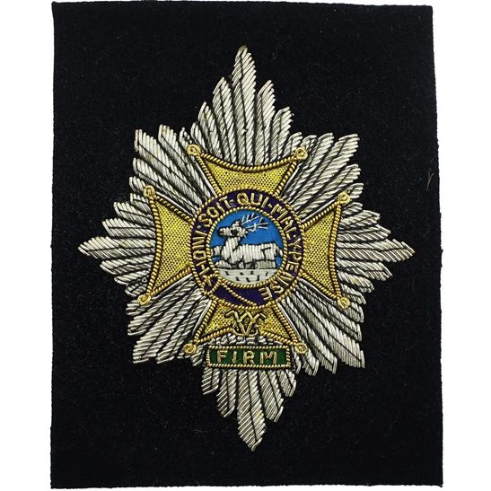 Worcestershire Regiment Worcestershire Regiment Cloth Veterans WIRE Blazer Badge Patch