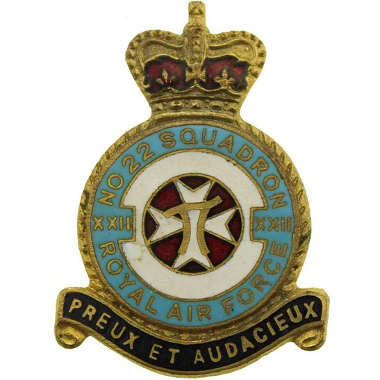 RAF Squadrons XXII 22 Squadron Royal Air Force RAF Lapel Badge