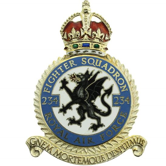 RAF Squadrons 234 Fighter Squadron SILVER Royal Air Force PLAQUE Badge RAF