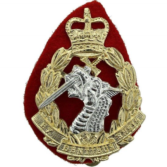Army Dental Corps Royal Army Dental Corps RADC Dentist Staybrite Anodised Cap Badge - Staybright