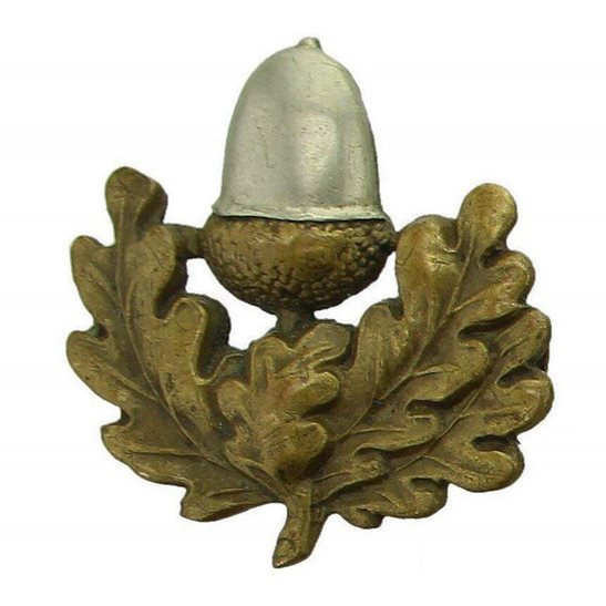 Cheshire Regiment The Cheshire Regiment Collar Badge