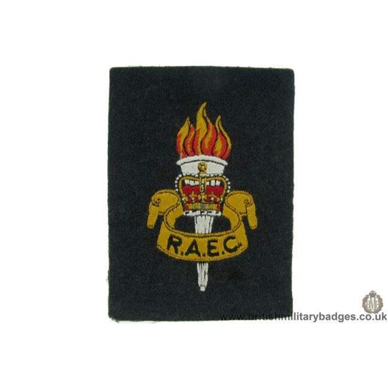 R1B/14 - Royal Army Educational Corps RAEC Blazer Badge