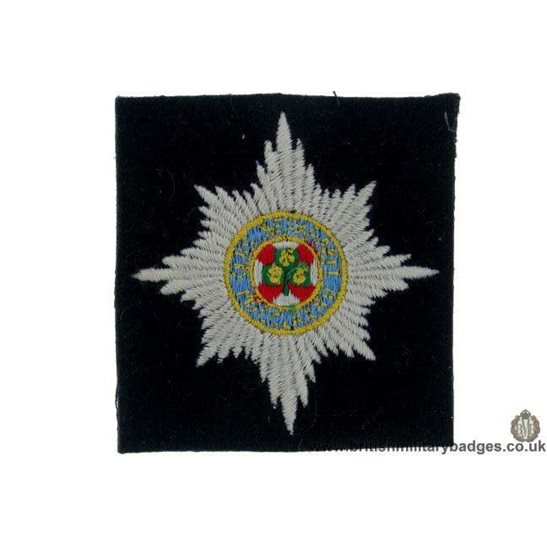 R1B/32 - Irish Guards Regiment Blazer Badge