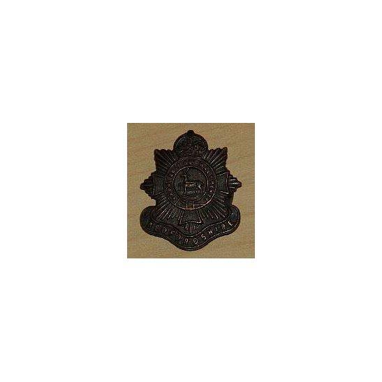 AA09/011 - Bedfordshire Regiment Lapel Badge