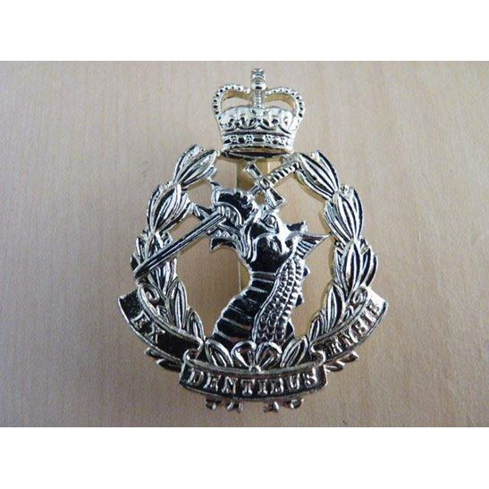 H55/039 - Royal Army Dental Corps RADC Staybright Cap Badge