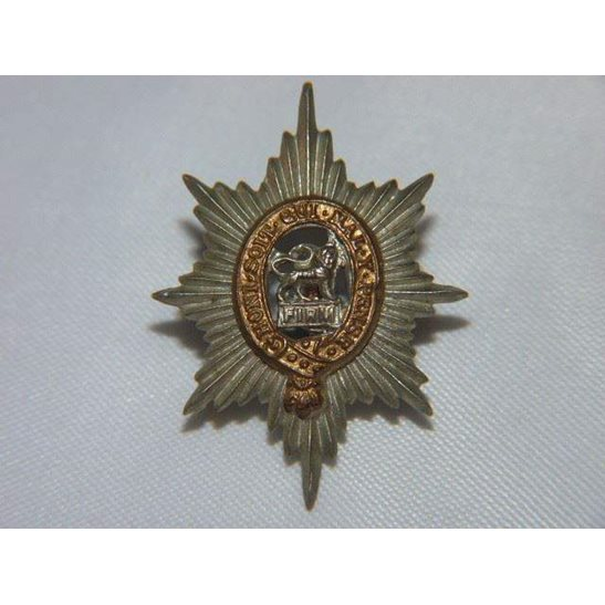 L55/231 - The Worcestershire Regiment Collar Badge