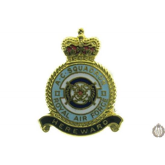 2 II A.C. Squadron Royal Air Force Lapel Badge RAF