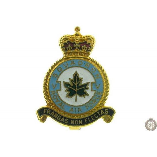 5 (V) Squadron Royal Air Force Lapel Badge RAF