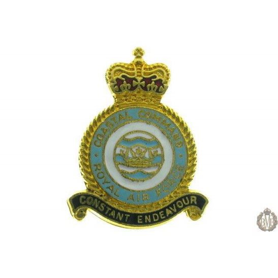Costal Command Royal Air Force RAF Lapel Badge