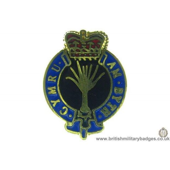 S1A/12 - Welsh Guards Regiment Lapel Badge