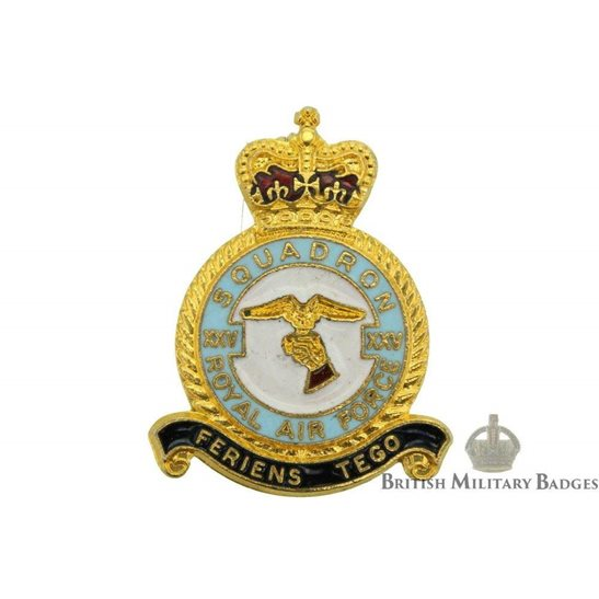 25 (XXV) Squadron Royal Air Force Lapel Badge RAF