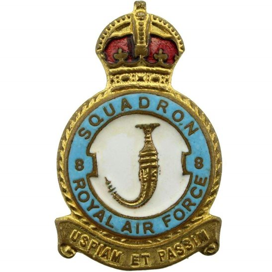 RAF Squadrons 8 Squadron Royal Air Force RAF Lapel Badge - H W MILLER LTD Makers Mark