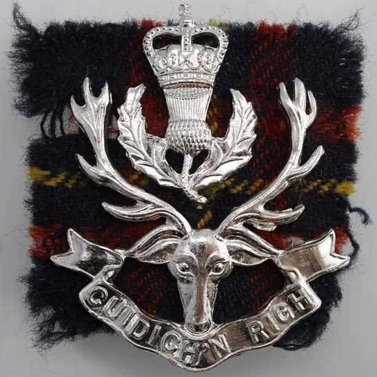 Queens Own Highlanders (Seaforth and Camerons) Regiment Staybrite Anodised Cap Badge Tartan - Staybright