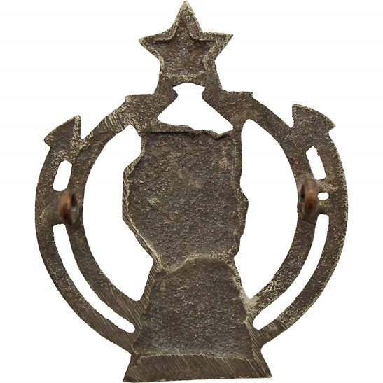 additional image for Indian Armoured Corps IAC India Army Cap Badge