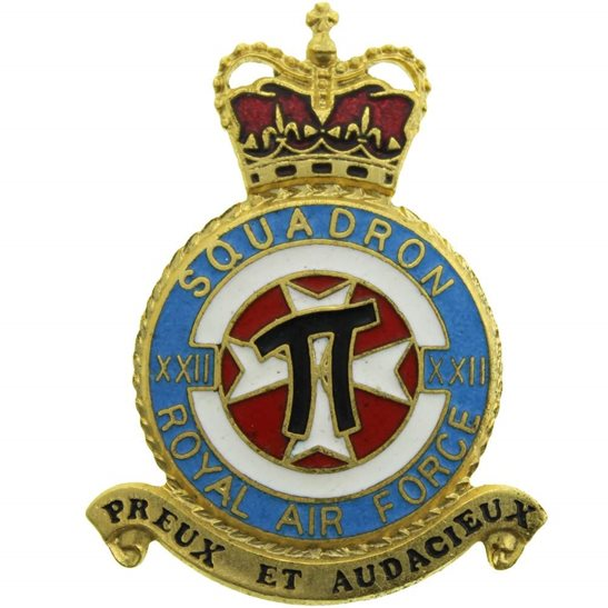 RAF Squadrons 22 XXII Squadron Royal Air Force PLAQUE Badge RAF