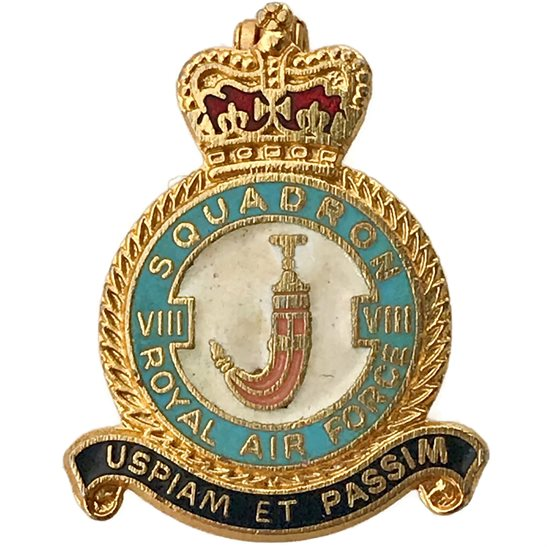 RAF Squadrons 8 VIII Squadron Royal Air Force RAF Lapel Badge