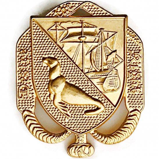 Falkland Islands Defence Force Regiment Cap Badge