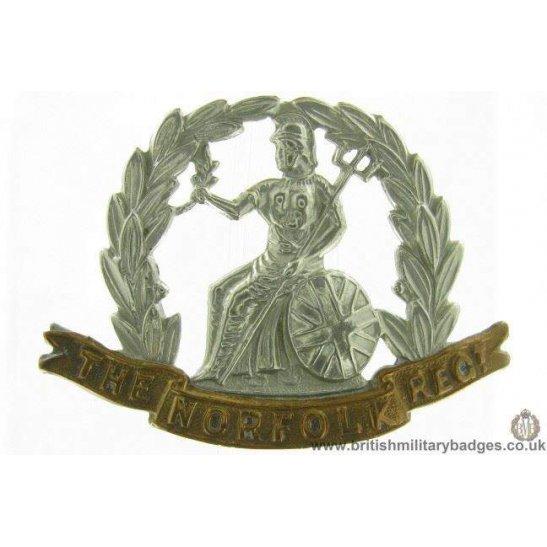 A1F/99 - VICTORIAN The Royal Norfolk Regiment Cap Badge - LUGS