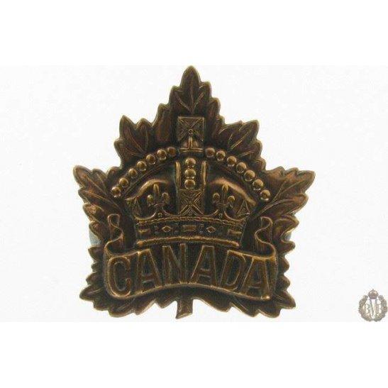 additional image for 1I/007 - Royal Warwickshire Regiment Cap Badge