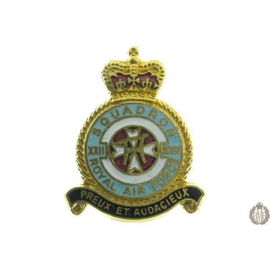 22 (XXII) Squadron Royal Air Force Lapel Badge RAF