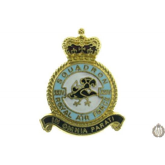 24 (XXIV) Squadron Royal Air Force Lapel Badge RAF